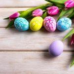 春の装飾やディスプレイにおすすめのツール5選